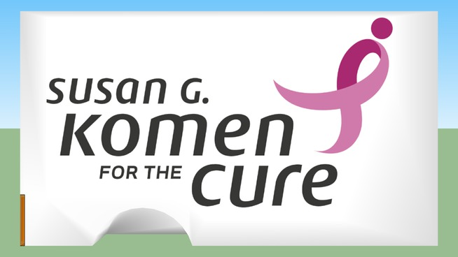 Susan G. Komen For The Cure Truck Box