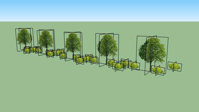 3rd Angle Trees 13.