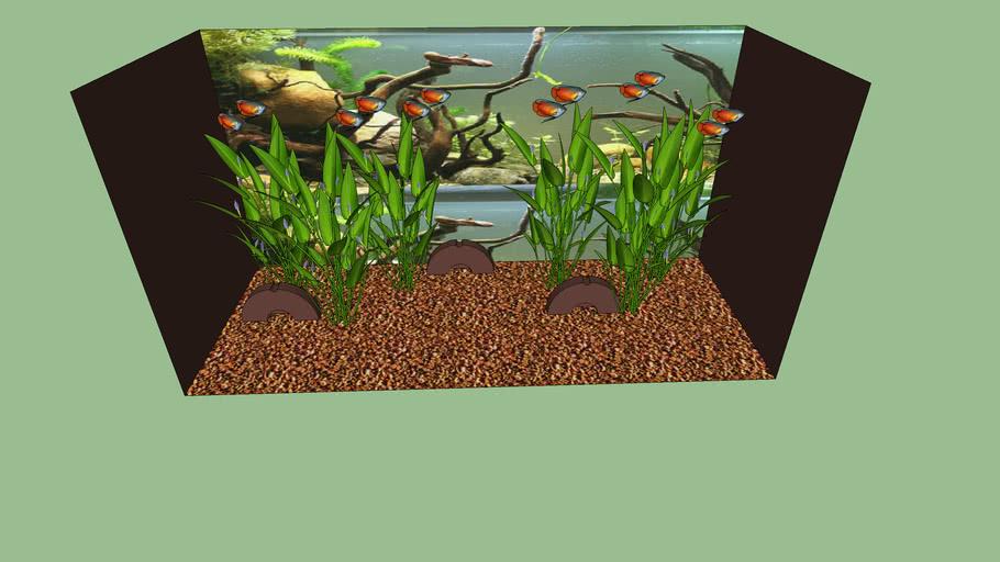 Aquarium lesopdracht vis