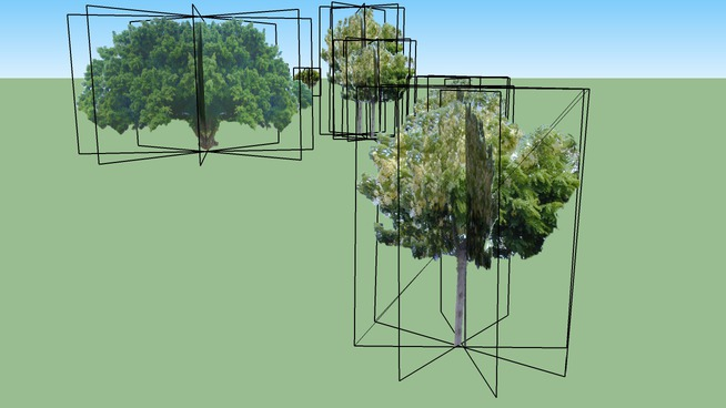 Kalakaua Avenue Landscaping