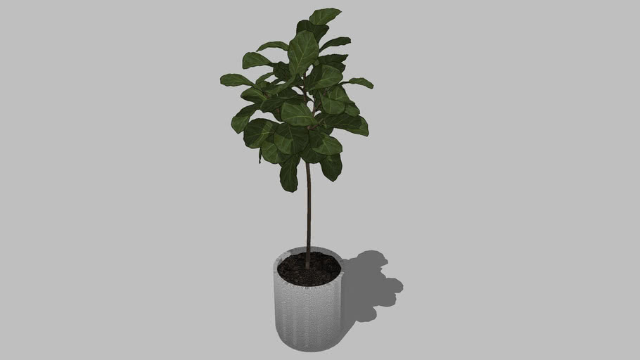 Planter (05)