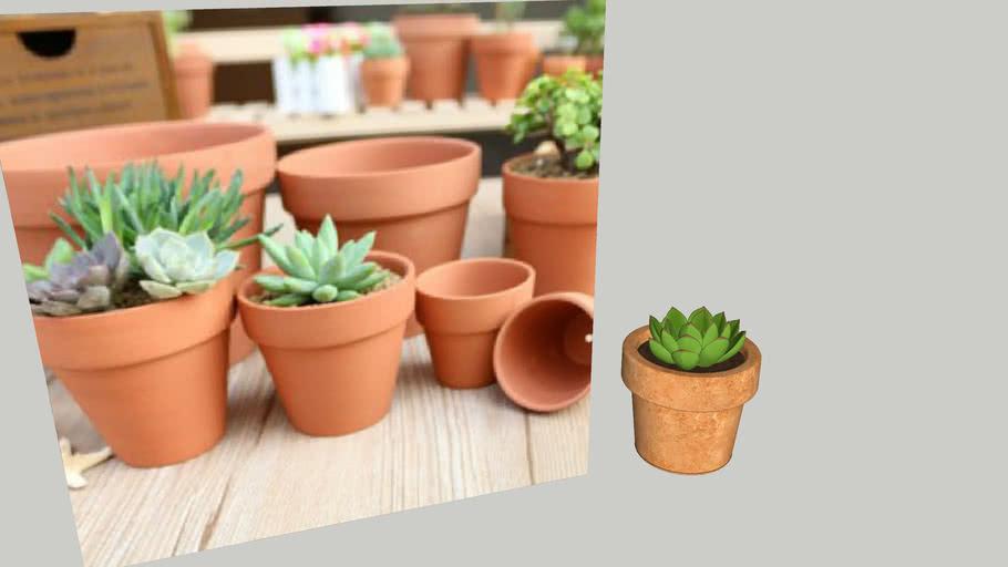 plant_flower_Terracotta pots_chau cay dat nung_hoa