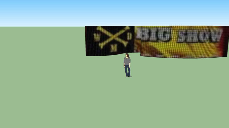Big Show Minitron
