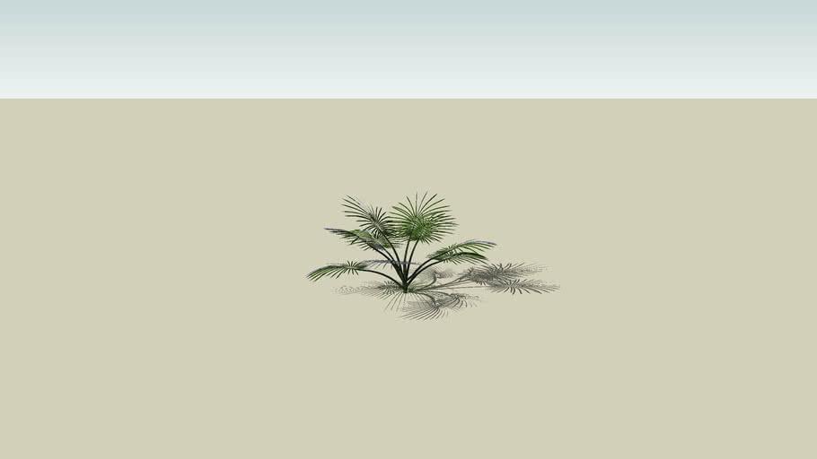 Planta leve
