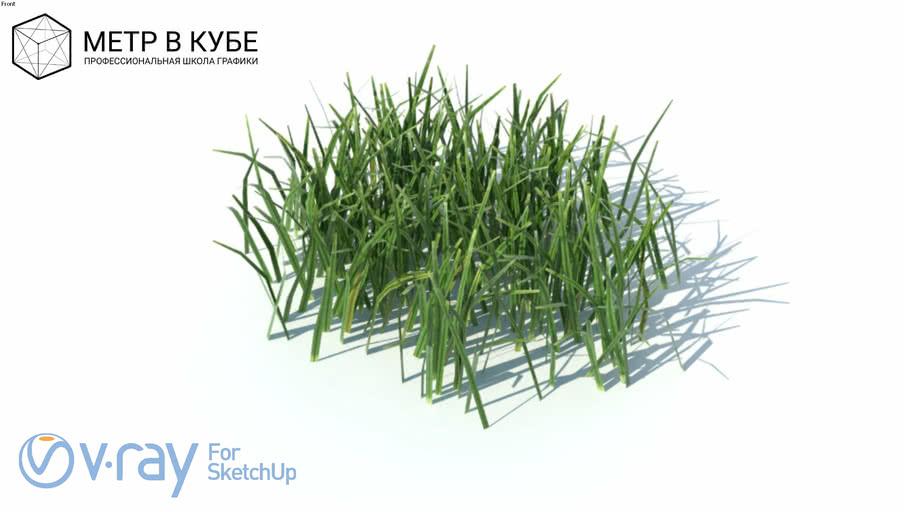 Grass, hight poly + maps, vray ready (007)