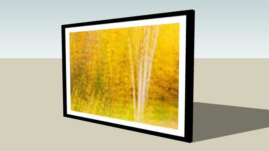 Birches In Gold by Shelley Ball