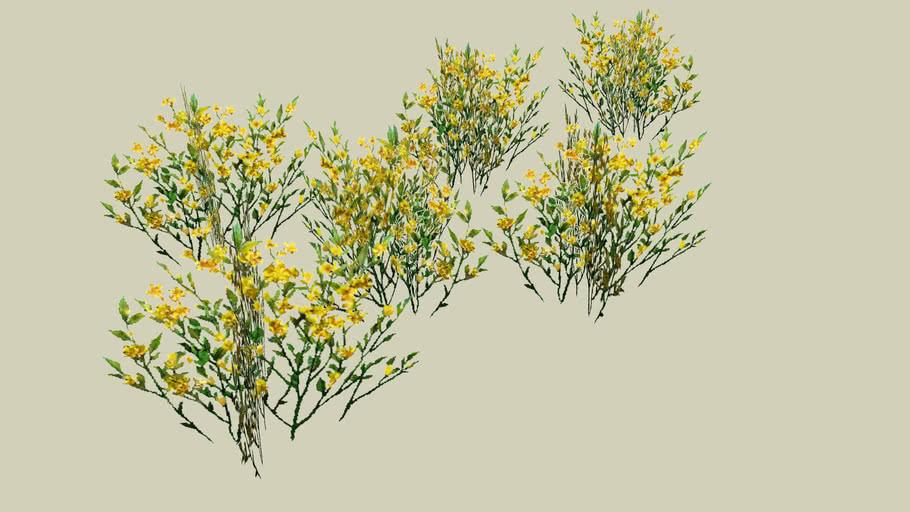 Grass I (PNG)