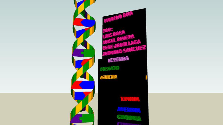 Modelo del DNA