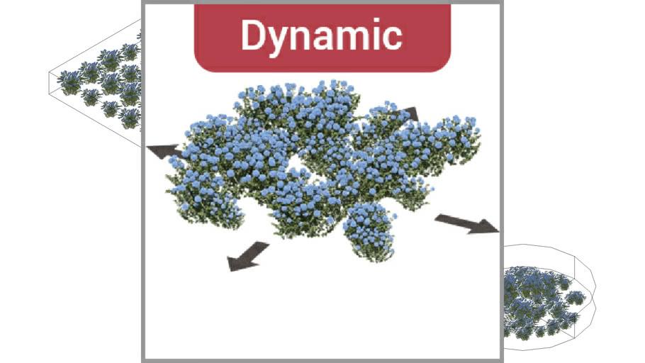 ROCKIT3D | Hydrangea macrophylla 0.9 m blue (Hortensia) dynamic