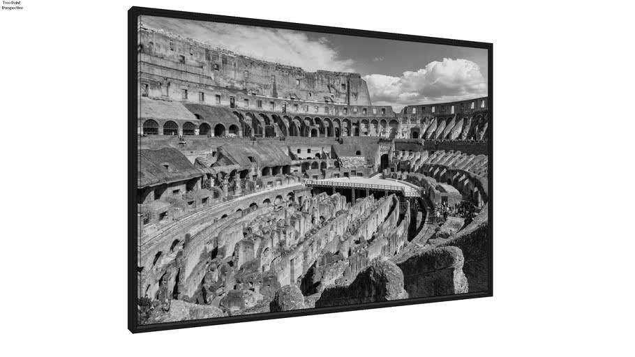 Quadro Colosseo (Interno II) p&b