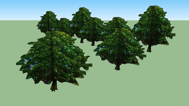 Drzewa Kortowo 31