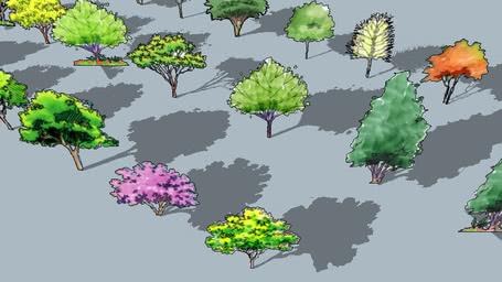 painting 2D TREE