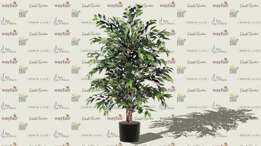 Floral-Tree Smilax