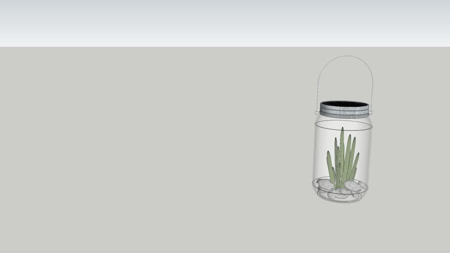 Solar Light in jar with cactus