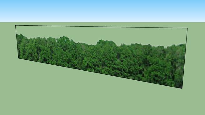 erdőszél2