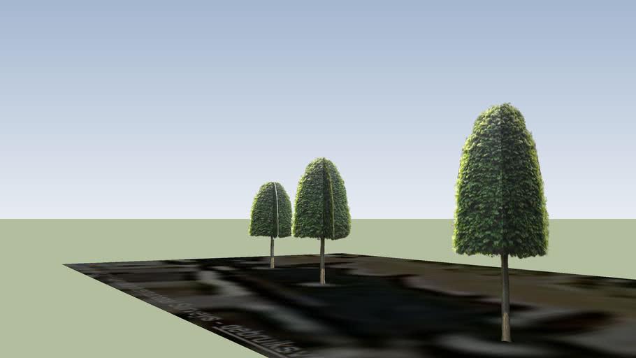 Ermelo - Stationstraat 123-129 Bomenrij