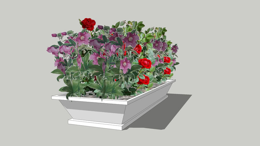 dwnld flowers