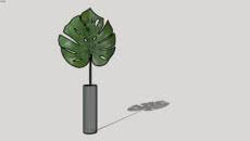 Dec plant