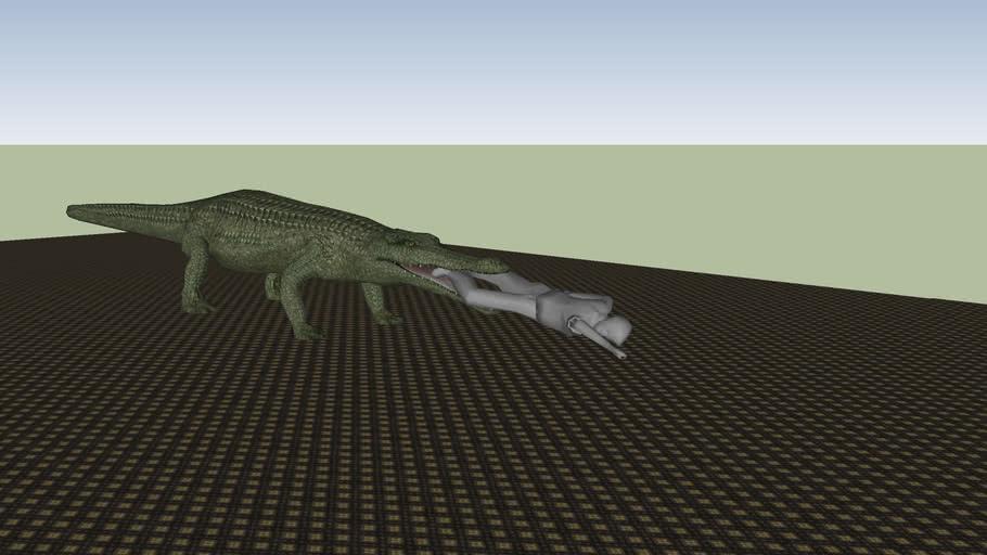 Crocodile dragging man in room