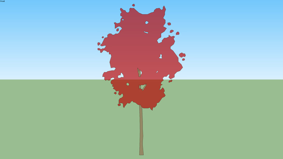 Small Red Tree