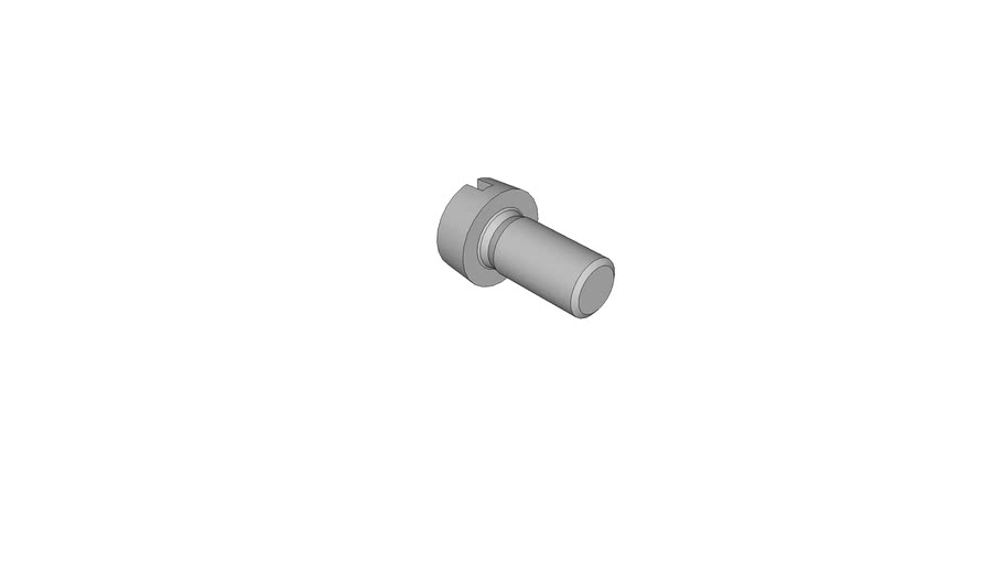 07021804 Slotted cheese head screws DIN 84 AM5x10