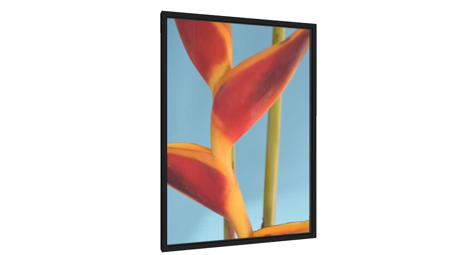 Quadro Colors and Flowers I - Galeria9, por Mario Amaral