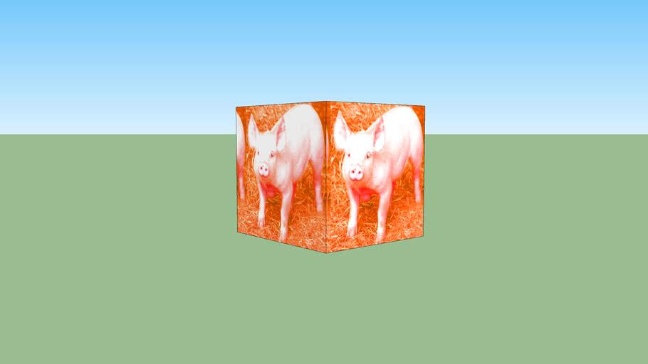 creepy looking pig cube