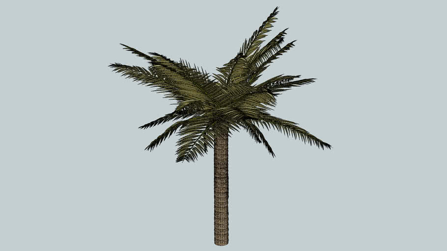 palmier 3D Arbre tree