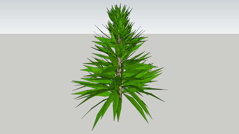 Random Plants - Dimension 55cm(Dia) x 48cm(H)