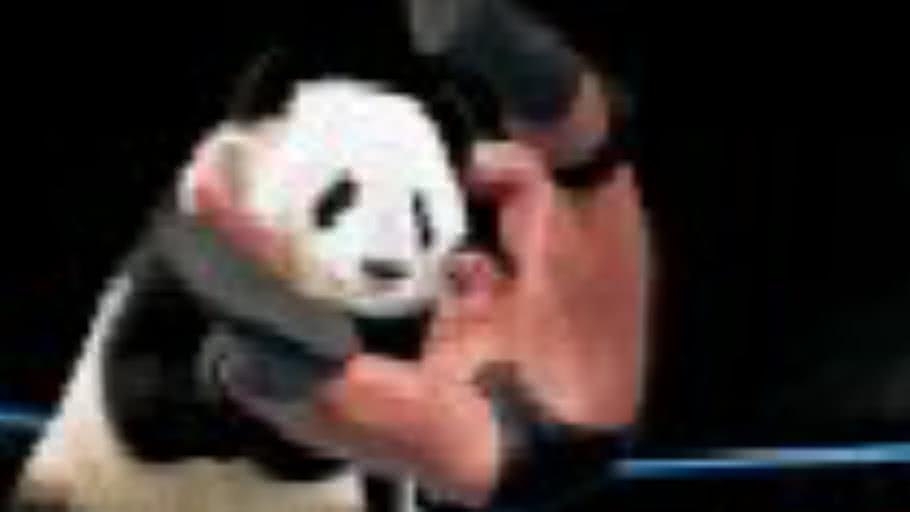 Randy Orton Hates Pandas