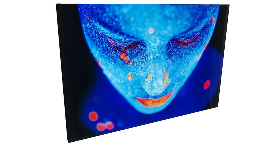 39277 Picture Glass Luna Girl 80x120cm