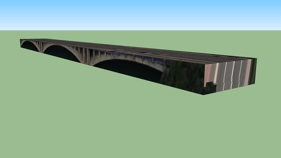 Pont Pasteur, Lyon
