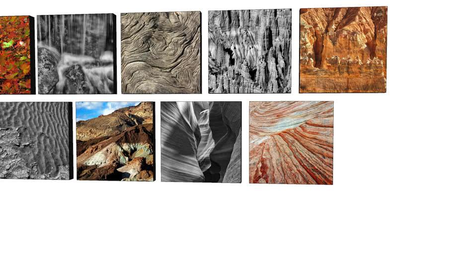 Coleção Natureza - Quadros Dorival Moreira