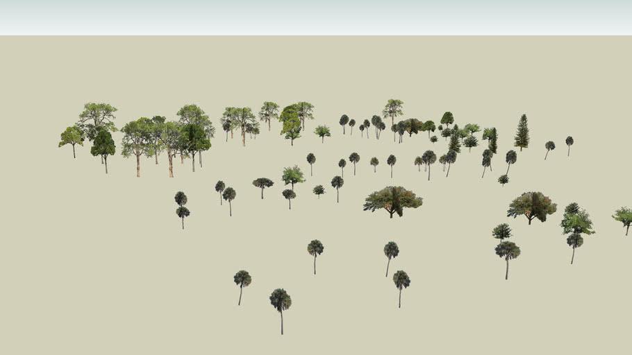 ashraf tenun akademi pokok