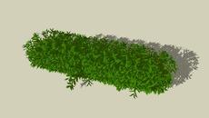 3D PLANTS - LARGER FILE SIZE