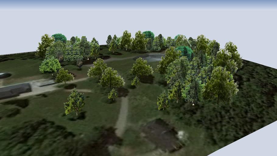 Bäume beim  Astropeiler