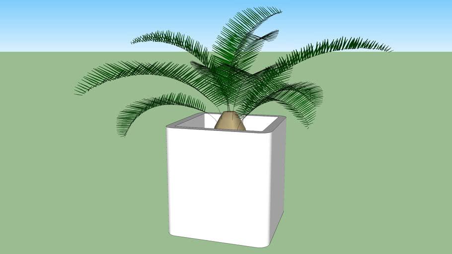 planta.skp