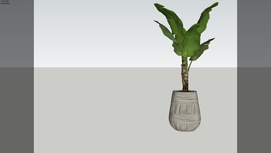 Folhagem em Vaso 01 - V-ray 3.6
