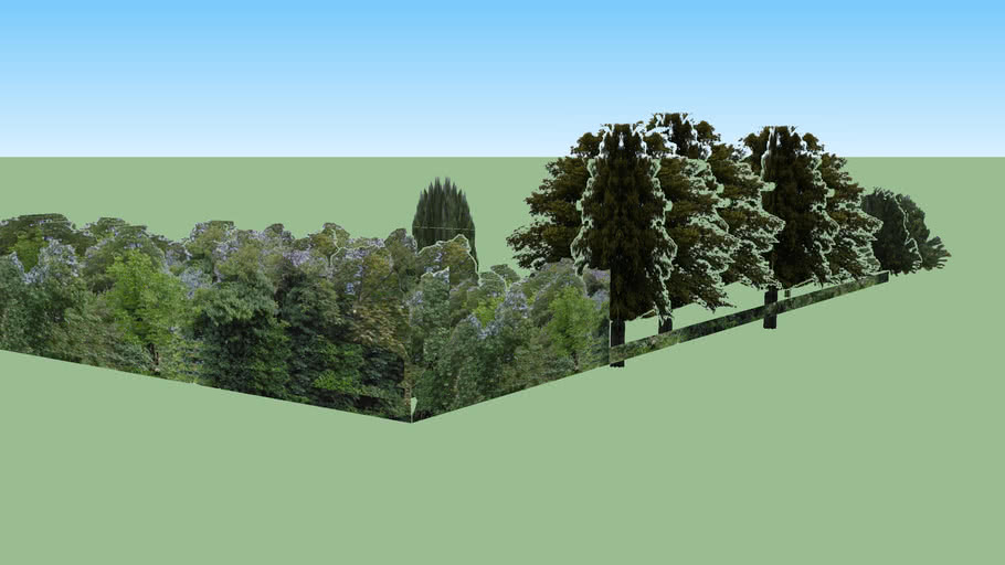 Trees and Hedge, Chadleigh House boundary walls