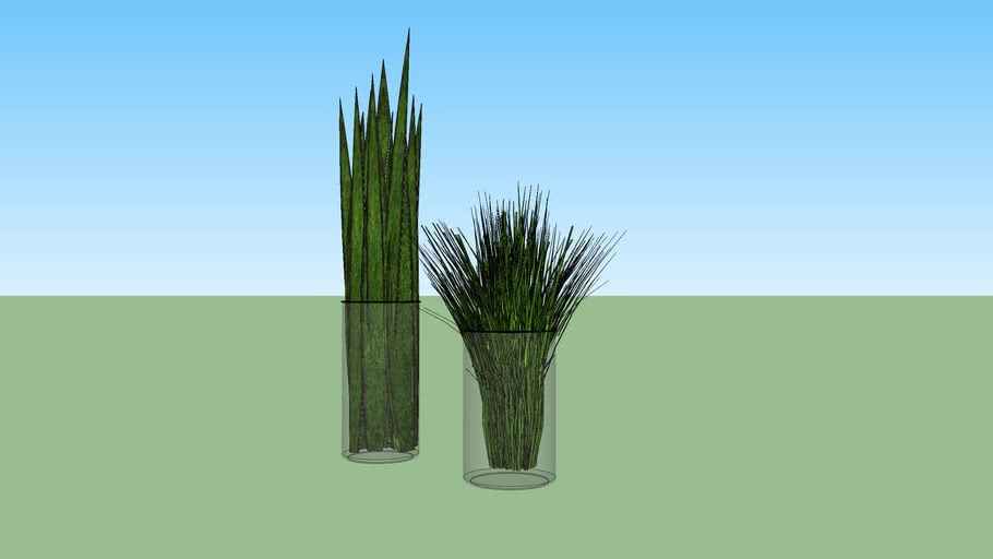 Vaso com plantas