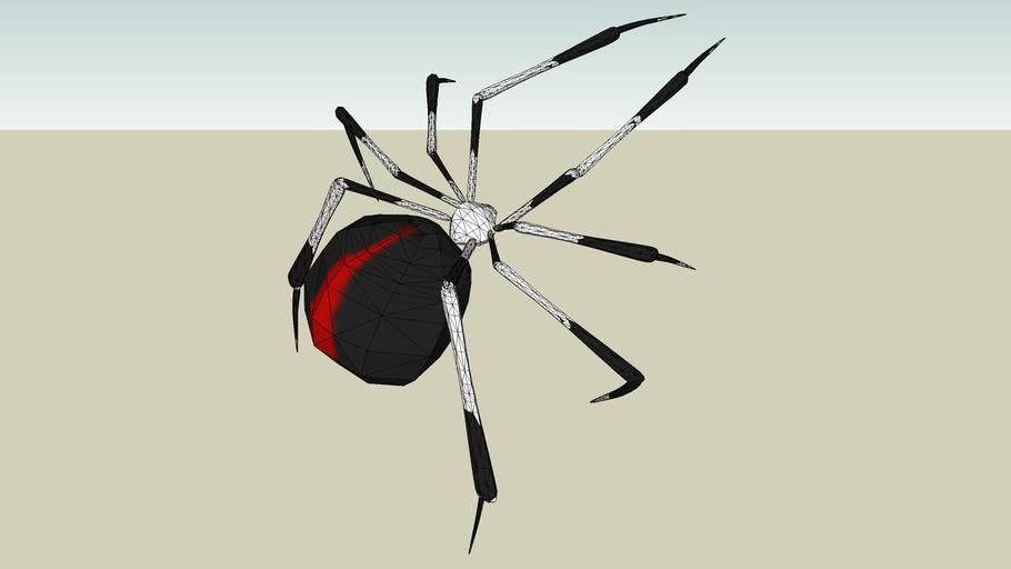 Red back widow spider