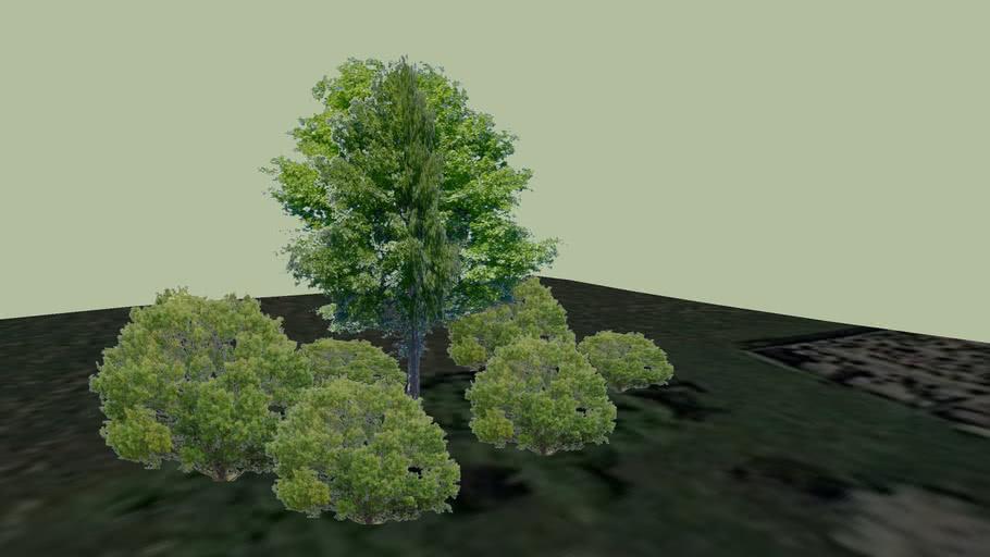 Luzerner Garten: Milieu