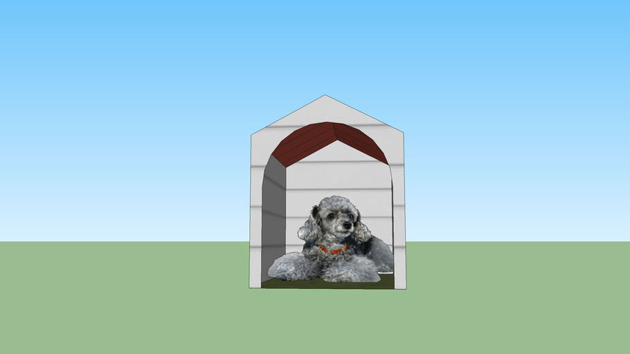 dog in a dog house!