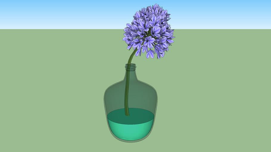 Vaso de vidro com flor Agapanto
