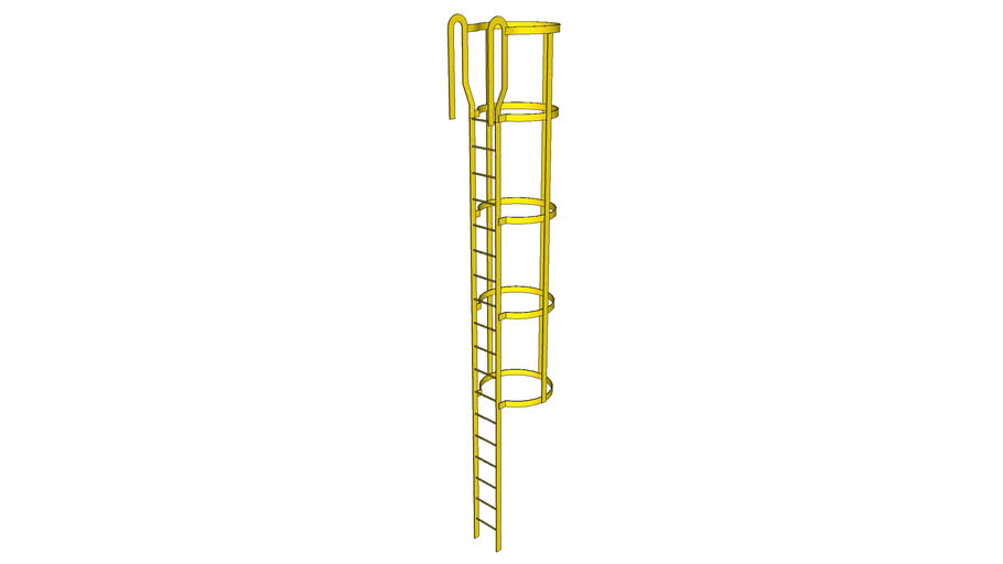 Industrial Ladder with Cage