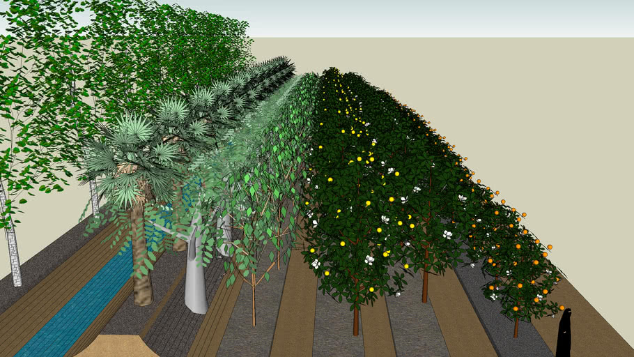 Permaculture - Greening the Desert