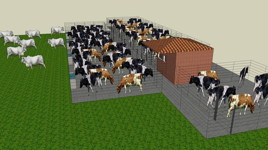 corrales con ganado