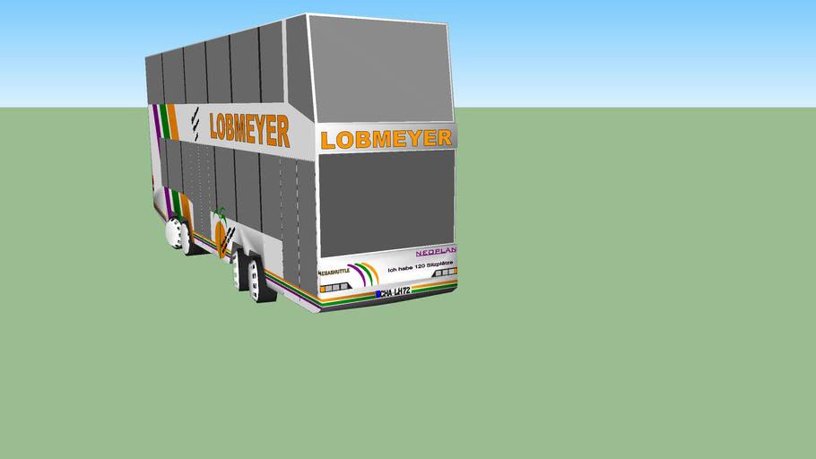 Lobmeyer / Rodinger Verkehrsbetriebe: Neoplan N 4032/4 1996