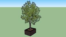 tree planter_3D