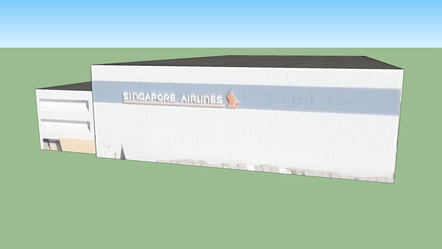 Delta / Singapore airlines hangar